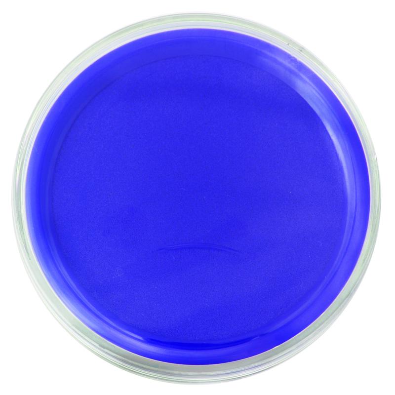 得力(deli)9863 圆形透明外壳快干印台 财务办公用品盖章印泥 多色可选 蓝色