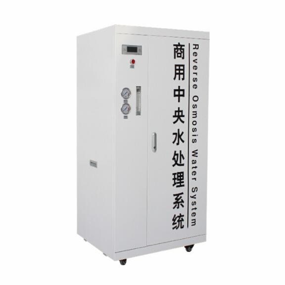 千善 0.25吨箱式大型水处理设备 RO反渗透直饮工业商用净水机 去离子纯水机